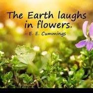 Lutey's Flowers logo