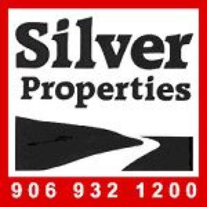silver-properties